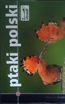 Polska Ptaki /32801/