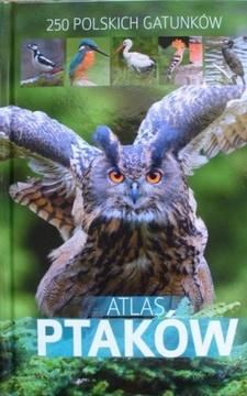 Atlas ptaków 250 polskich gatunków /113419/