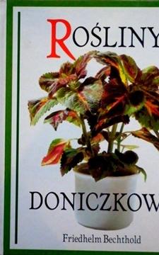 Rośliny doniczkowe /113555/