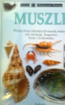 Muszle /20464/