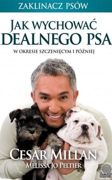 Jak wychować idealnego psa w okresie szczenięcym i później /114033/