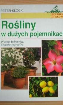Rośliny w dużych pojemnikach