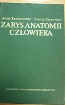 Zarys anatomii człowieka /20514/