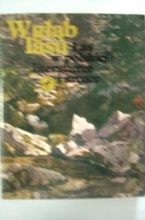 W głąb lasu Las w polskiej literaturze i sztuce