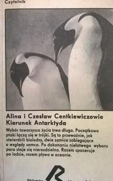 Kierunek Antarktyda /4329/