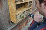Budowa domku dla owadów.