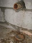 Gniazdo jerzyka na betonowej podłodze stropodachu. Fot. Mariusz Grzeniewski