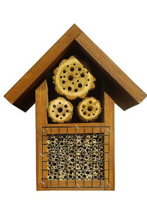 Hotel dla owadów