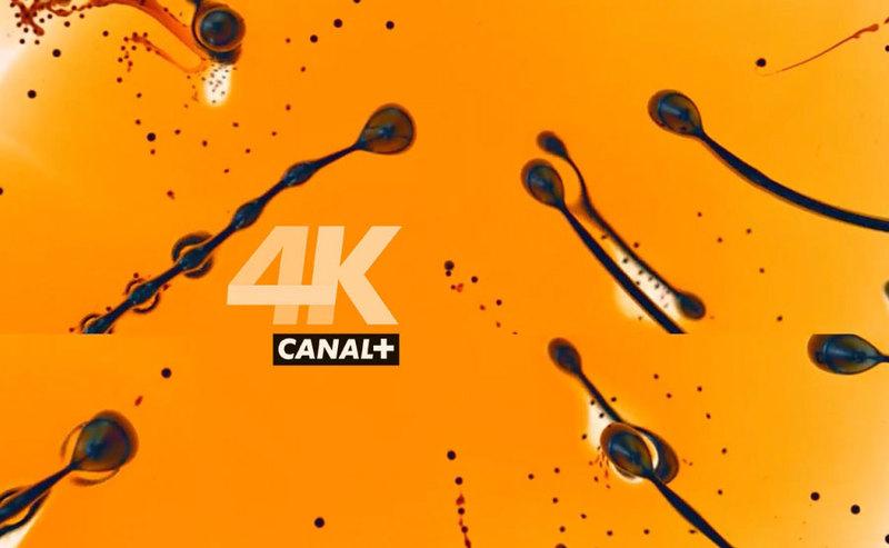 Telewizja 4K UHD - nc+