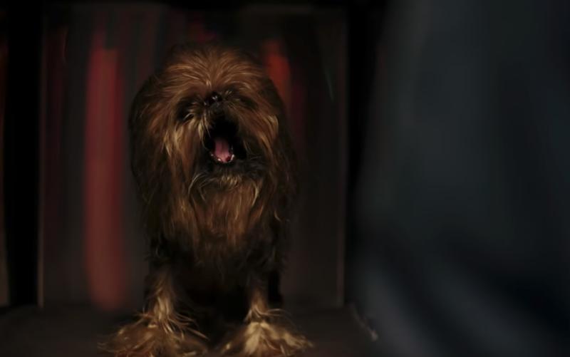 Psi Chewbacca w świątecznej reklamie Samsunga