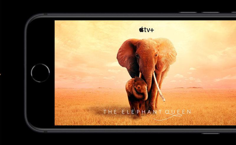 Ceny iPhone SE w Orange