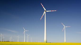 Orange Polska inwestuje w zieloną energię