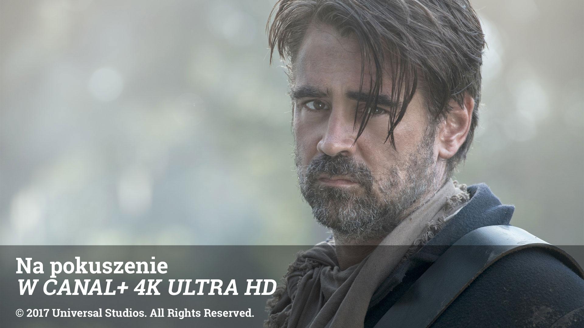 Na pokuszenie W CANAL+ 4K ULTRA HD