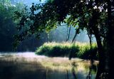 Rzeka Piława
