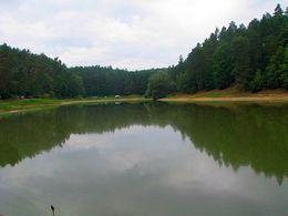 Jezioro Kopcze