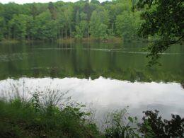 Jezioro Tarnowskie