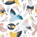 Dwuwarstwowa dziecięca maseczka higieniczna - CUTE BIRDS
