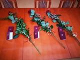 Uroczystość wręczenia medali nagrodzonym pracownikom MOPR.
