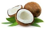 Orzechy palmy kokosowej