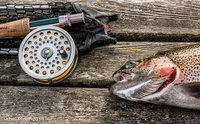 Metody łowienia