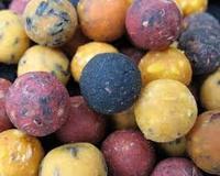 Kulki proteinowe sprawiły, że łowienie karpi przestało być tylko wędkarstwem dla koneserów. Dzięki kulkom stało się ono sportem bardzo popularnym.
