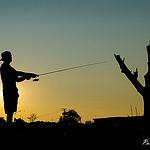 Jak zacząć efektywnie łowić ryby