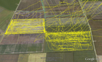 Ślady żerowania samca błotniaka łąkowego zarejestrowane przez logger GPS trzy dni po zbiorze lucerny na ptasim polu (mapa: Almut Schlaich)