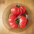 Rosso Sicilian  (Russo Sicilian Togetta)
