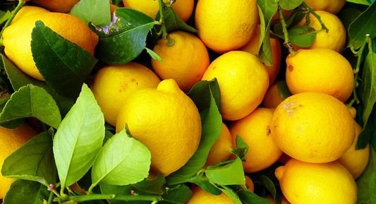 Lemon water can boost your immune system